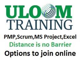 4 Sundays  PMP / CAPM Certification Exam Prep Course
