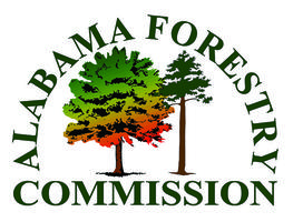 Forest Certification - From the Woods to the Mills &...