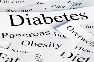DIABESITY: The Diabetes Seminar