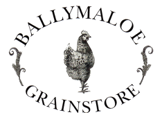 Martin Hayes and Dennis Cahill @ Ballymaloe Grainstore...