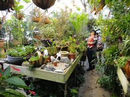 Marsh Botanical Garden Tour