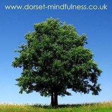 Dorset Mindfulness Centre logo