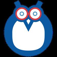 H2Owls Swim Lessons logo