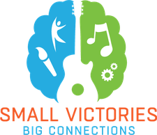 Small Victories Foundation logo