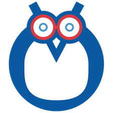 H2Owls Lifeguarding logo