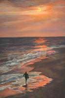 Pastels with Judith Crowe