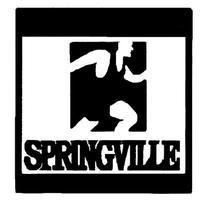 Springville 5K (2013)