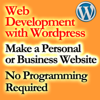 Make a business website with Wordpress - Workshop with...