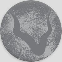 Vizuri logo