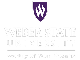 Wednesday 6 PM  WSU - Test Drive Your Dreams