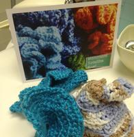 Hyperbolic Crochet for the Baltimore Satellite Reef