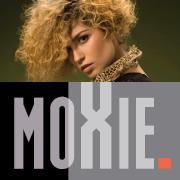 Moxie Advance Academy with Stephen Adams logo