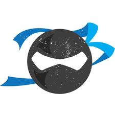 Adjusting Ninjas logo