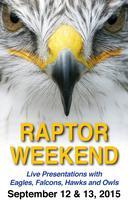 Audubon Raptor Weekend 2015