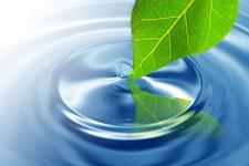 Mindfulness-West logo