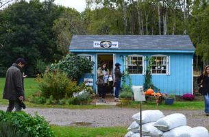 Exploring Long Island's North Fork with Chef Rich
