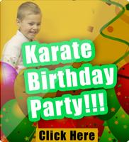 Shane McGraw's 6th Karate Birthday Party