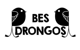 05/09 BES Drongos Petai Trail Walk