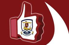 Galway Hurling Supporters Club (Dublin Branch) logo