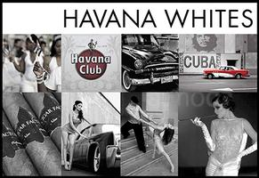 HAVANA WHITES