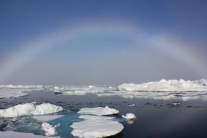 Polar Film Festival and Debate