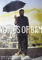 Screening: 'Voices of Bam'