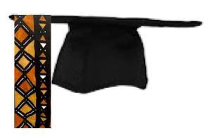 Black CAPs: A Celebration of Black Male Achievement