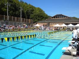 Triathlon/Swim Clinic in Novato