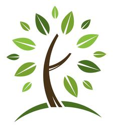 Keystone Spinal Care and Wellness Center logo