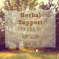 Holistic Moms Network, Herbal Support for Fall