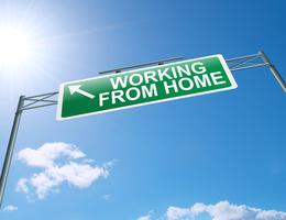 Legitimate Opportunities to Work from Home