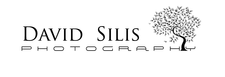David Silis Photography logo