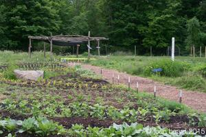 Eden Village Farm School: (Thursdays) Sept 3, 10, 24,...