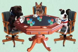 """BET ON A PITTIE"" Casino Night"