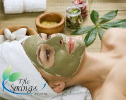 Spa Day at the Springs at Days Inn