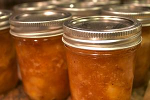 Introduction to Canning & Preserve Making