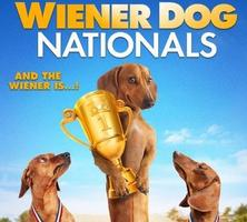 Wiener Dog Nationals Red Carpet Movie Premiere
