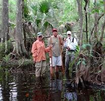 Fakahatchee Swamp Walk - Multiple dates