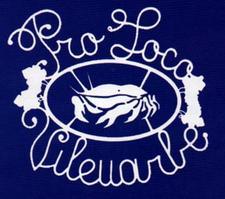 Pro Loco Villaorba logo