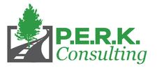 P.E.R.K. Consulting  logo