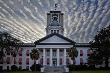 Florida Progressives logo