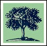 First Baptist Church of Doylestown logo