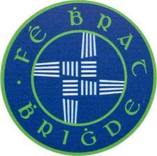 Coderdojo Scoil Bhride logo