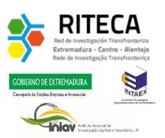 El aceite de oliva virgen en Extremadura y Alentejo /...