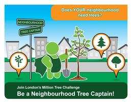 Neighbourhood Tree Captains Level 1 - role and responsibilities
