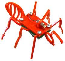 Robot Bug Workshop and Race