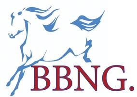 Blackburn Business Networking Group ( BBNG)
