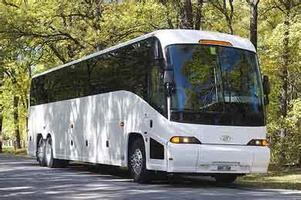 Texas Essence Bus Trip Information Mixer