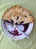 July Pros(e) of Pie: Solid Stories, Flaky Crusts -...