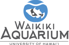 Waikiki Aquarium Volunteer Center logo